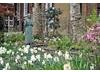 St James Garden