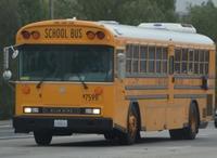 Schoolbus1pic