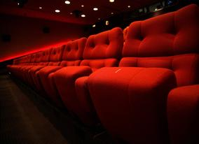 Get comforable in the purpose-built auditorium