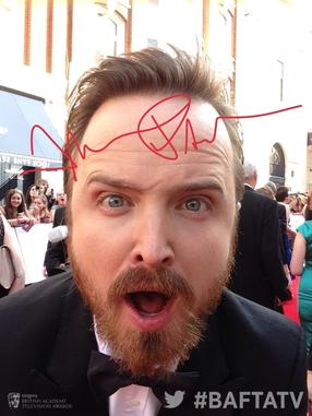 Aaron Paul - Twitter Mirror