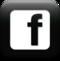 Facebook Logo Square [Webtreatsetc]