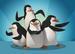 The Penguins of Madagascar - International